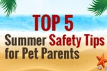 Top 5 Summer Safety Tips for Pet Parents