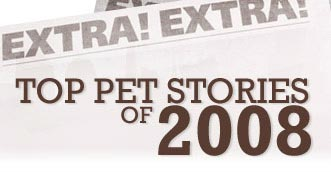 Top Pet Stories of 2008