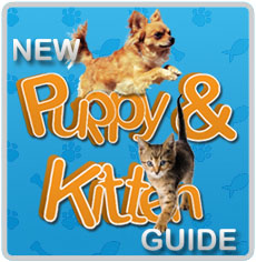 Top Products For Puppiers And Kittens