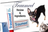 Traumeel Review & Ingredients