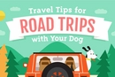 Traveling with Dogs and Puppies: A Guide to Dog Friendly Vacations