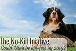 The No-Kill Initiative: Could Utah Be Kill-Free By 2019?