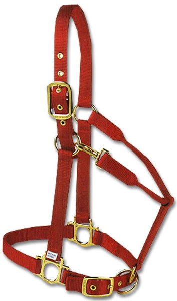 Valhoma Horse Halter Brass Medium - RED