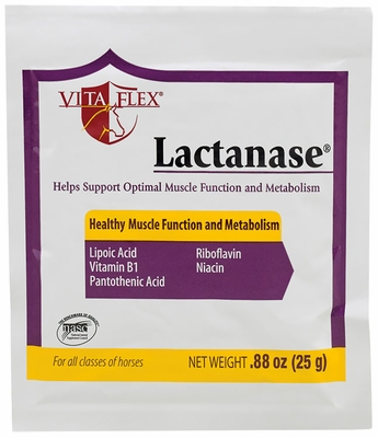Vita Flex Lactanase Packet (25 g)
