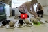 Watch These 10 Adorable Labrador Puppies Learn to Eat Solid Food for the First time!