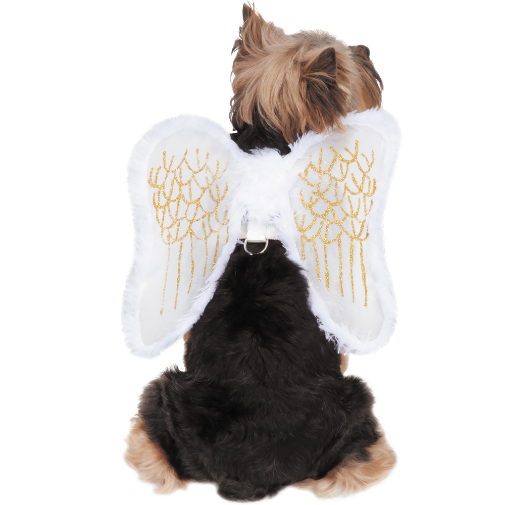 Zack & Zoey Angel Wings Harness Dog Costume - Large