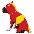 Zack & Zoey Dragon Costume
