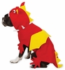 Zack & Zoey Dragon Costume - MEDIUM