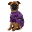 "Zack & Zoey Halloween Bat Tee Purple - XS (10"")"