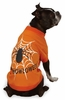 "Zack & Zoey Halloween Glow Web Tee Orange - M (16"")"