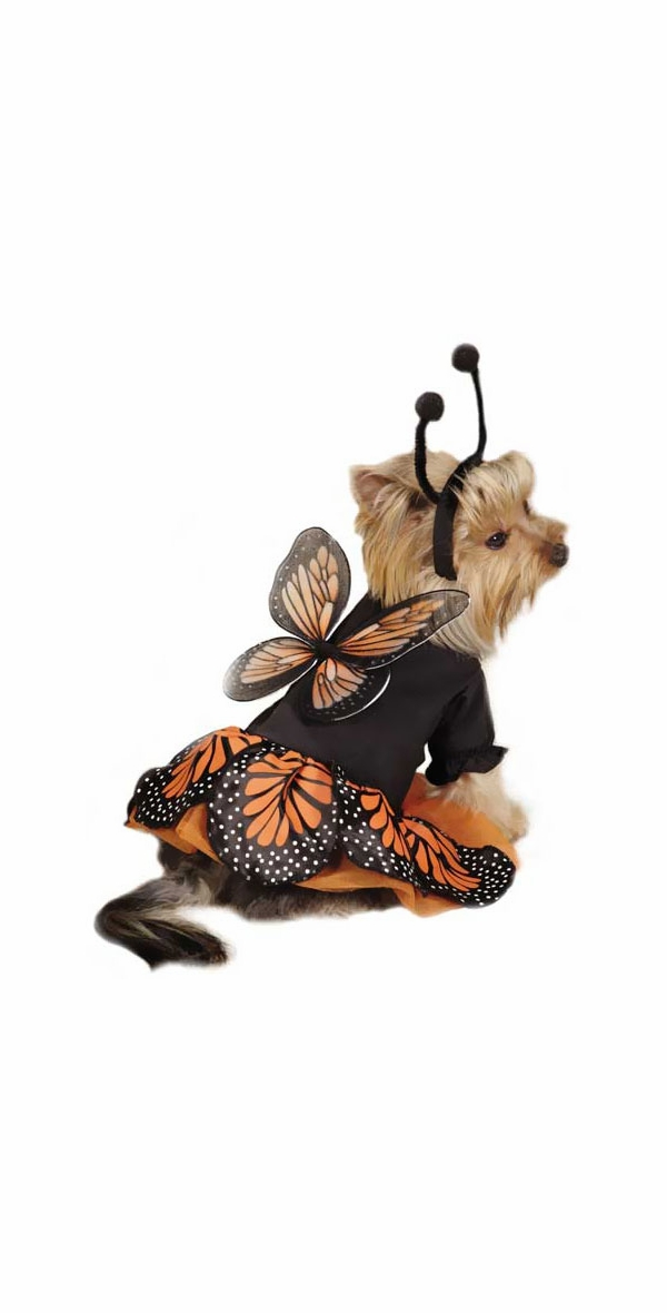 Zack & Zoey Monarch Butterfly Costume