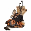 Zack & Zoey Monarch Butterfly Costume - MEDIUM