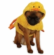 Zack & Zoey Quakers Duck Costume - SMALL