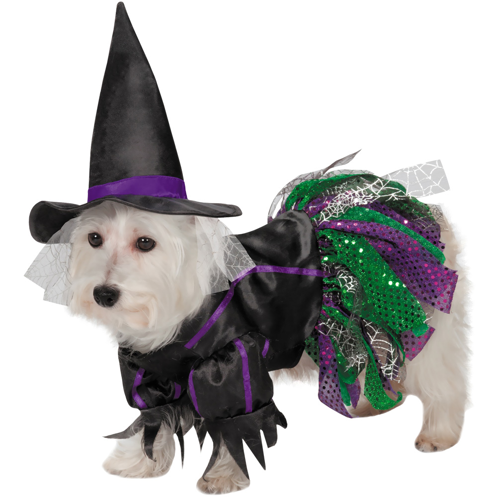 Zack & Zoey Scary Witch Dog Costume - Medium