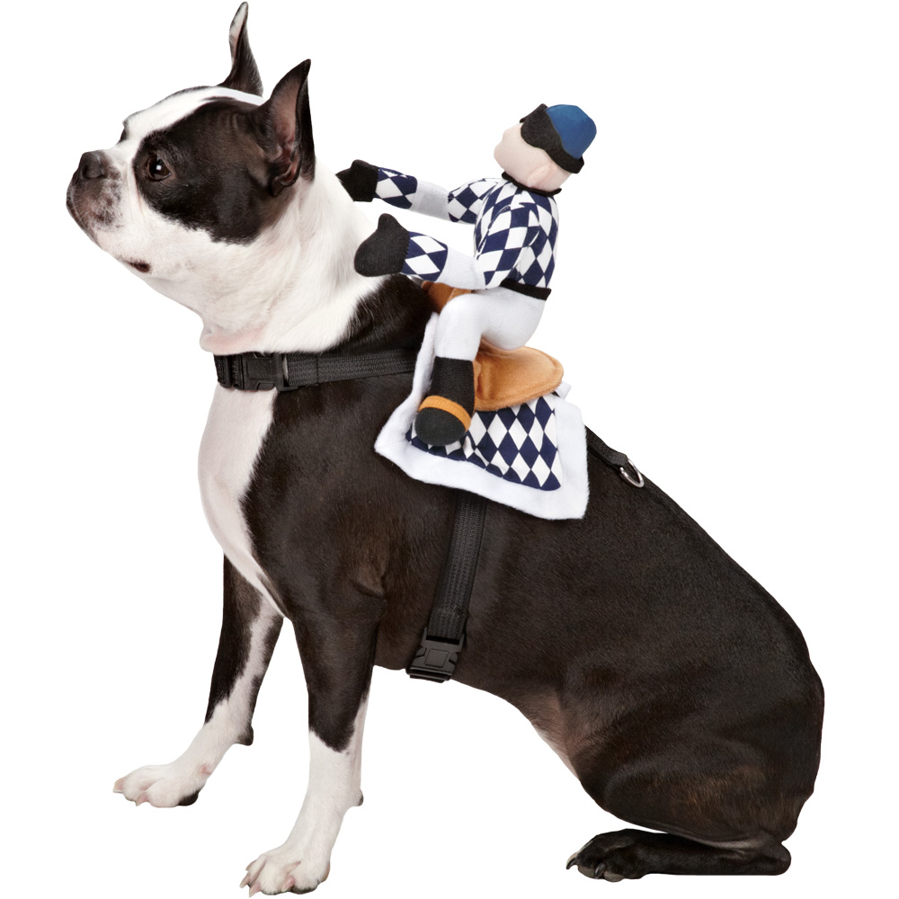Zack & Zoey Show Jockey Saddle Costume - Medium
