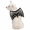 Zack & Zoey Skeleton Glow Wing Harness Costume - XLarge