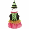 Zack & Zoey Witchy Business Costume Green - XLARGE