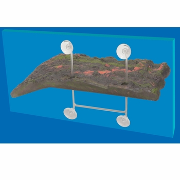 Zoo Med Turtle Dock (Small )