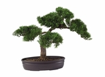 "16"" Cedar Bonsai Silk Plant in Green - Nearly Natural - 4106"
