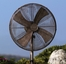 "18"" Deco Adjustable Outdoor Standing Fan- Deco Breeze - DBF0621"
