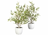 "18"" Olive Silk Tree with Vase (Set of 2) - Nearly Natural - 4774-S2"