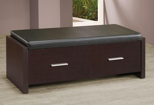 2 Drawer Storage Bench with Padded Seat - 508002