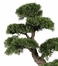 "24"" Cedar Bonsai Silk Plant in Green - Nearly Natural - 4103"
