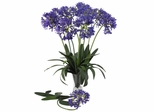"29"" African Lily Stem (Set of 12) - Nearly Natural - 2129-PP"
