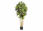 5' Croton Silk Tree in Green - Nearly Natural - 5180