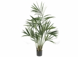 5' Kentia Palm Silk Tree - Nearly Natural - 5307