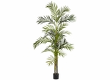 6' Areca Palm Silk Tree - Nearly Natural - 5316
