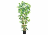 6' Bambusa Bamboo Silk Tree in Green - Nearly Natural - 5214