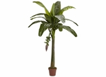 6' Banana Silk Tree (Real Touch) - Nearly Natural - 5338