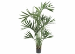 6' Kentia Palm Silk Tree - Nearly Natural - 5308