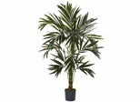 6' Kentia Silk Tree - Nearly Natural - 5341