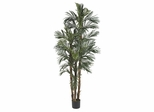 6' Robellini Palm Silk Tree in Green - Nearly Natural - 5284