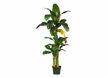 6' Triple Stalk Banana Silk Tree in Green - Nearly Natural - 5226