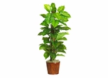 "63"" Large Leaf Philodendron Silk Plant in Green - Nearly Natural - 6594-0508"