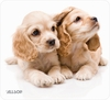 Allsop Naturesmart Puppies Mousepad