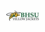 Black Hills State Yellow Jackets College Sports Furniture Collection