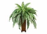 Boston Fern with Wood Vase Silk Plant in Green - Nearly Natural - 6553