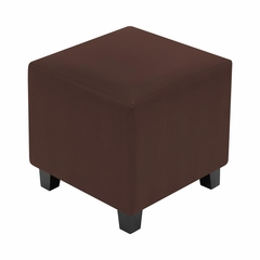 Brown Serpent Cube Ottoman - Lumisource