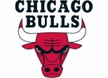 Chicago Bulls NBA Sports Furniture Collection