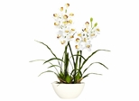 Cymbidium with White Vase Silk Flower Arrangement - Nearly Natural - 4803