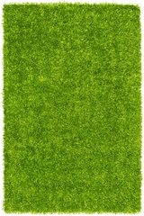 Dalyn Bright Lights Lime Tufted Area Rug - BG69LM