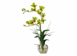Dendrobium with Glass Vase Silk Flower Arrangement in Green - Nearly Natural - 1135-GR