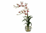 Dendrobium with Glass Vase Silk Flower Arrangement in White - Nearly Natural - 1135-WH