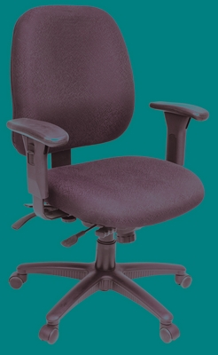 Director Full-function Task Chair, Mid-Back - ROF-2403-BK