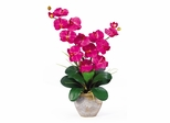 Double Phalaenopsis Silk Orchid Flower Arrangement in Beauty - Nearly Natural - 1026-BU