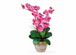 Double Phalaenopsis Silk Orchid Flower Arrangement in Dark Pink - Nearly Natural - 1026-DP